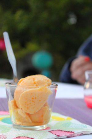 Recette Frozen yogourt {pêche fleur de sureau Sojade et abricots}