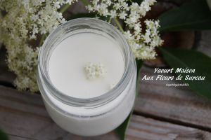 Recette Yaourts maison aux fleurs de sureau