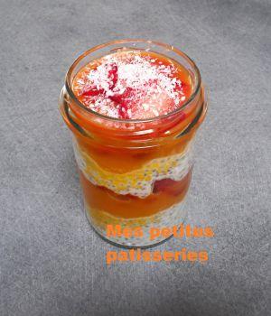 Recette Pudding aux graines de chia fraise, mangue et coco