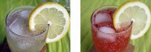 Recette Chia fresca, le drink de l'été