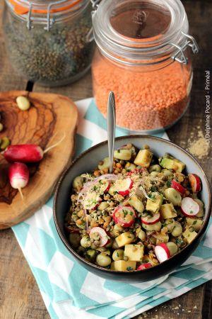 Recette Salade gourmande de lentilles et fèves aux radis roses