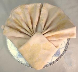 Recette Pliage de serviettes: La coquille