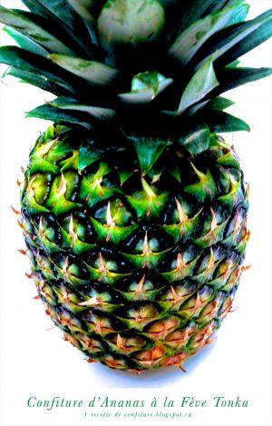 Recette Confiture d'Ananas à la Fève Tonka