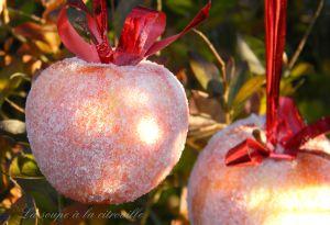 Recette Pommes givrées au sucre diy