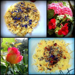 Recette Galettes de parmesan tout en couleur