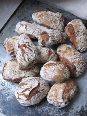 Recette Petits pains à la tomate des Pouilles