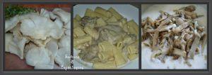 Recette Pâtes aux Pleurotes Sauce Crémeuse