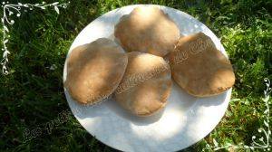 Recette Petit pain Pita ou pain libanais