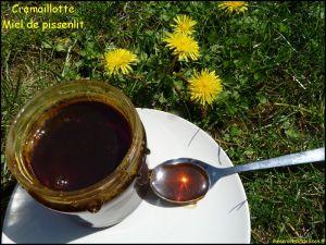 Recette Cramaillotte : miel (confiture) de pissenlit