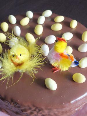 Recette Entremets chocolat vanille